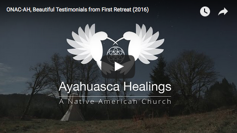 "What happened to ""Ayahuasca in America""?"