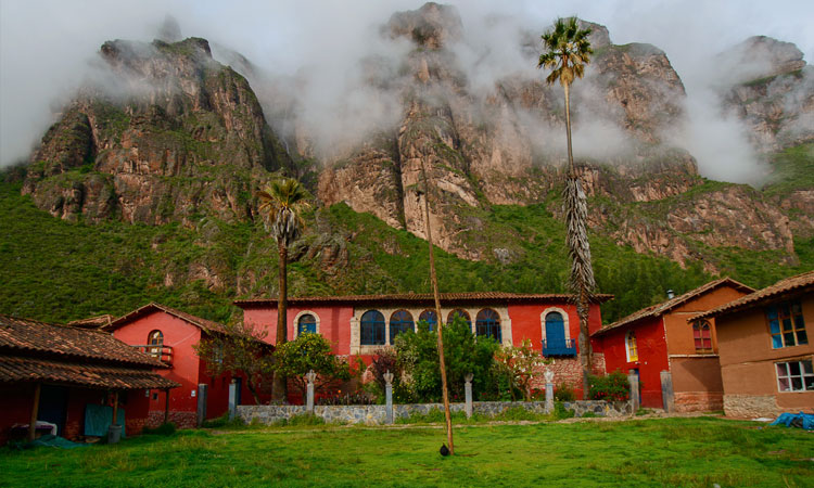 9 Day Ayahuasca Retreat at El Camino Sagrado, Peru (Half Payment)