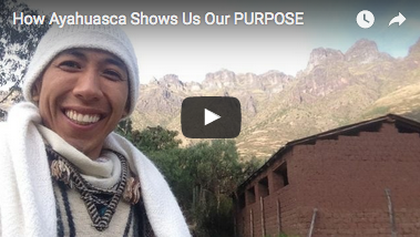 How Ayahuasca Shows Us Our Purpose...